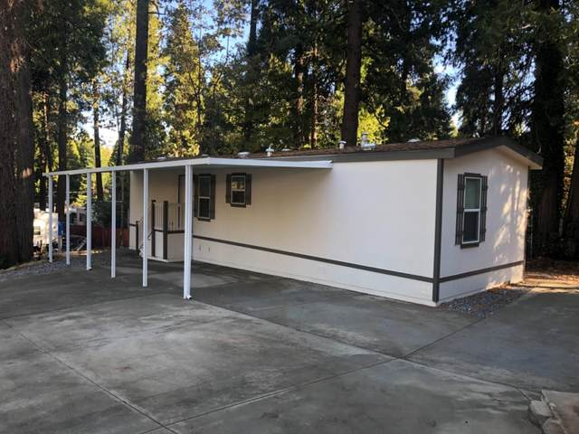 6421 Pony Express Trail, Pollock Pines, CA 95726 (MLS #20067280) :: 3 Step Realty Group