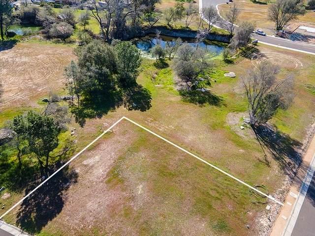 4046 Winding Lane, Rocklin, CA 95677 (MLS #221011662) :: The Merlino Home Team