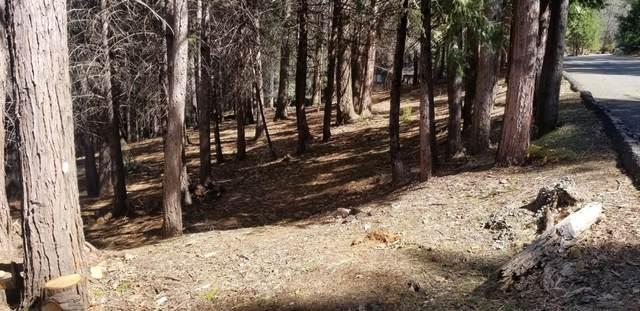 5771 Lupin Lane, Pollock Pines, CA 95726 (MLS #221032313) :: Live Play Real Estate   Sacramento