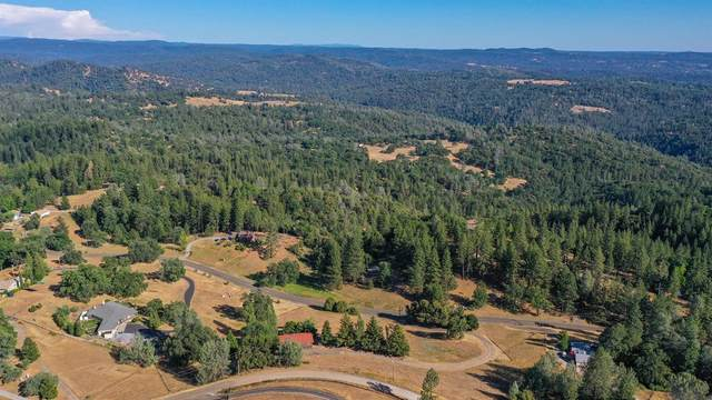 4001 Leisure Lane, Placerville, CA 95667 (MLS #221052585) :: The Merlino Home Team