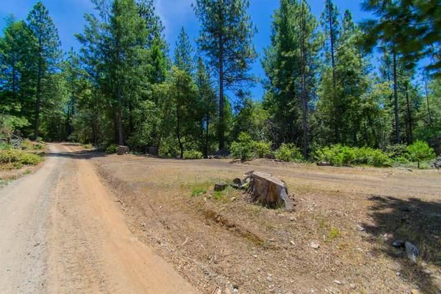 0 Allan Road, Volcano, CA 95689 (MLS #221058759) :: 3 Step Realty Group