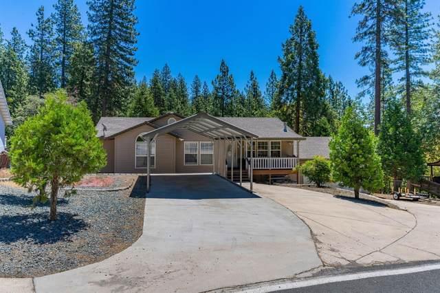 16850 Broken Oak Road, Pioneer, CA 95666 (MLS #221067829) :: Heather Barrios