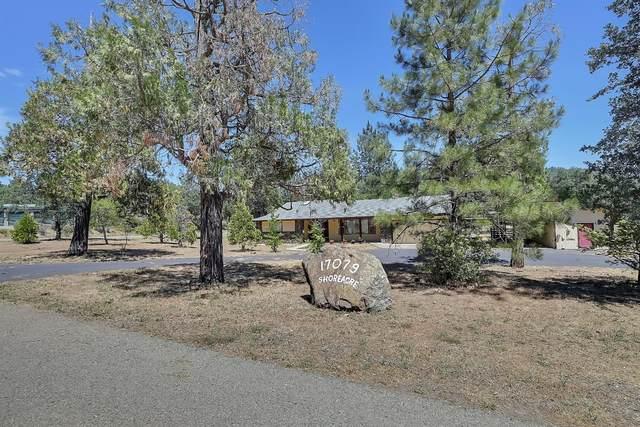 17079 Cottontail Lane, Brownsville, CA 95919 (MLS #221073088) :: Heidi Phong Real Estate Team