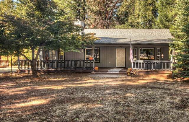 4987 Volcanoville Road, Georgetown, CA 95634 (MLS #221128840) :: Jimmy Castro Real Estate Group