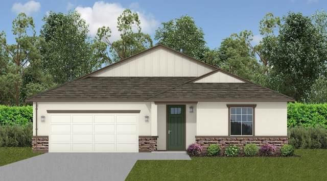 1445 Dunwoody, Olivehurst, CA 95961 (MLS #221131197) :: Heather Barrios