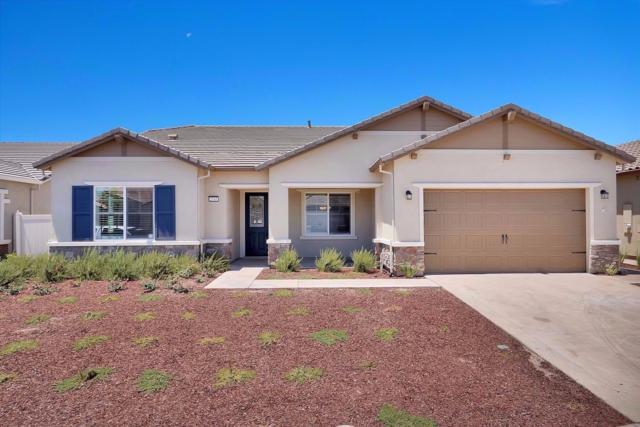 2745 Primrose Point Avenue, Manteca, CA 95336 (MLS #17033173) :: REMAX Executive