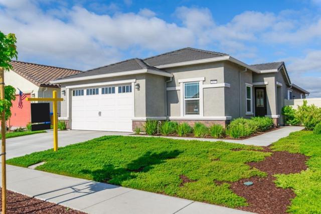 2637 Fern Meadow Avenue, Manteca, CA 95336 (MLS #18025874) :: Heidi Phong Real Estate Team