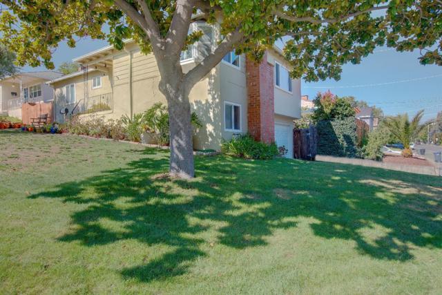 3920 Vineyard Avenue, Pleasanton, CA 94566 (MLS #18060148) :: Keller Williams - Rachel Adams Group