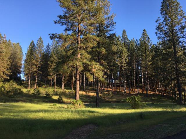 2031 Hidden Gold Trail, Cool, CA 95614 (MLS #18068465) :: The Merlino Home Team