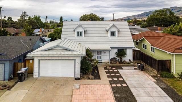 3265 Birchwood Lane, San Jose, CA 95132 (MLS #19082615) :: REMAX Executive