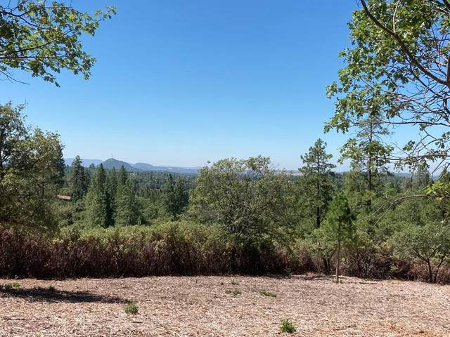 14521 Surrey Junction Lane, Sutter Creek, CA 95685 (MLS #20000403) :: Keller Williams Realty