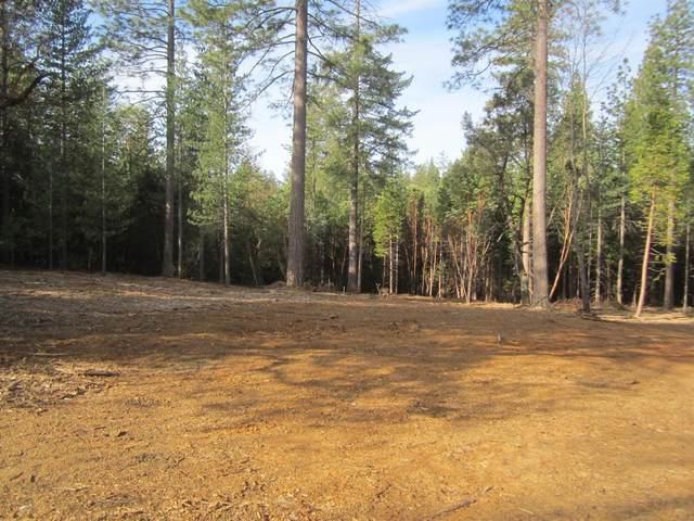 3191 Log Cabin Court, Placerville, CA 95667 (MLS #20010191) :: The Merlino Home Team