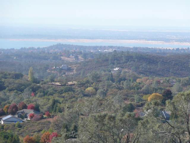 4446 Fremonts Loop, Rescue, CA 95672 (MLS #20015761) :: Heidi Phong Real Estate Team