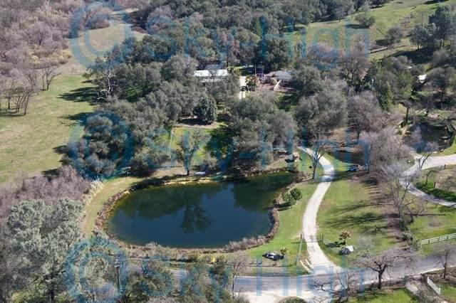 3362 Garden Bar Road, Lincoln, CA 95648 (MLS #221056211) :: Heidi Phong Real Estate Team