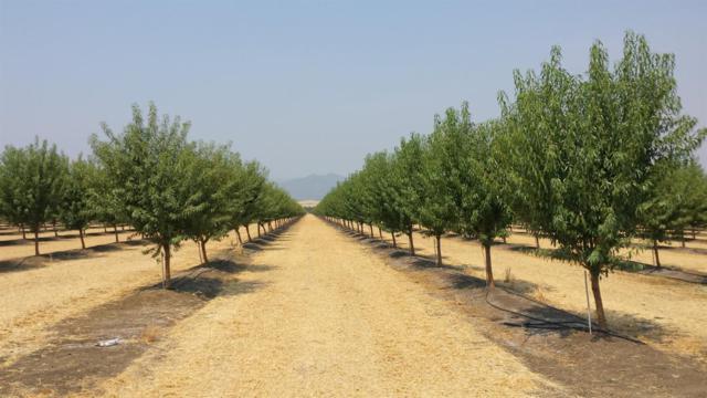 22819 County Road 88, Winters, CA 95694 (MLS #17000240) :: REMAX Executive