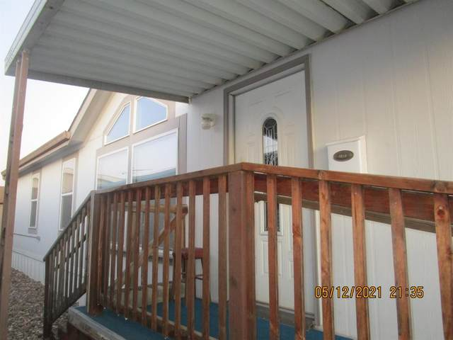 2505 Jackson Avenue #171, Escalon, CA 95320 (#221049882) :: Rapisarda Real Estate
