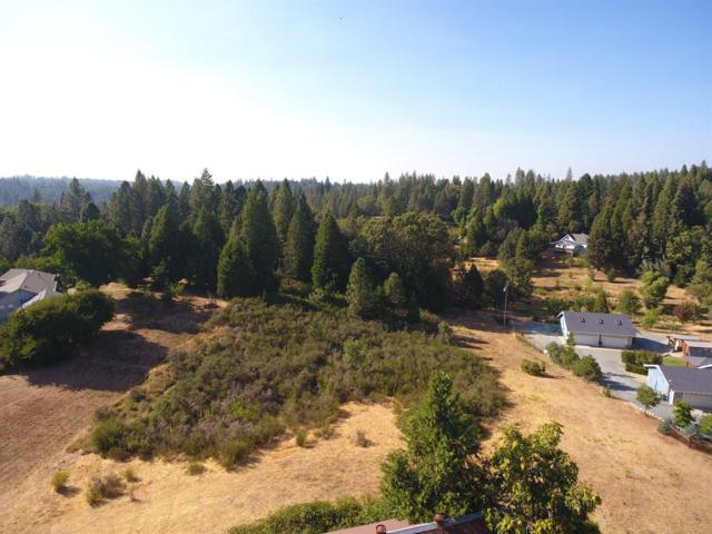 4046 Empire Creek Circle, Georgetown, CA 95634 (MLS #17045289) :: The Del Real Group
