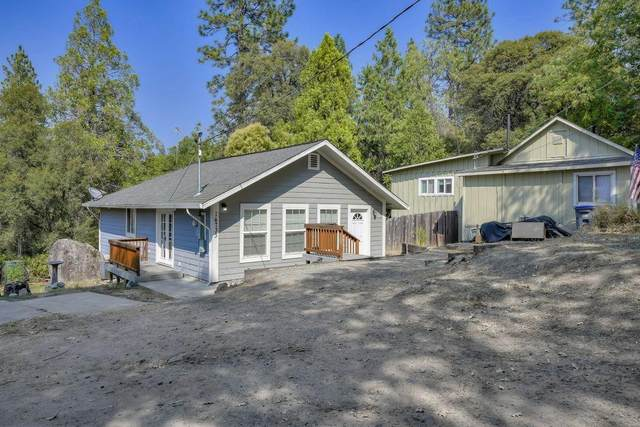 14733 Emigrant Trail, River Pines, CA 95675 (MLS #20039819) :: Dominic Brandon and Team