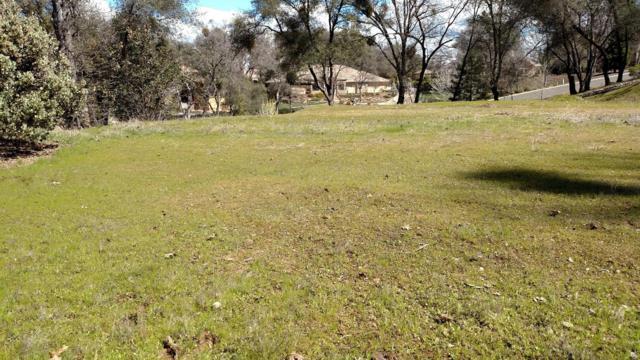 2300 Fieldstone Drive, Placerville, CA 95667 (MLS #17070438) :: Dominic Brandon and Team