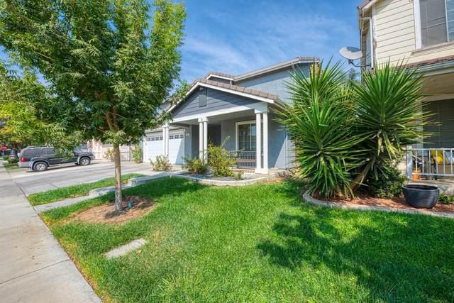1161 Tern Way, Patterson, CA 95363 (MLS #221126691) :: DC & Associates