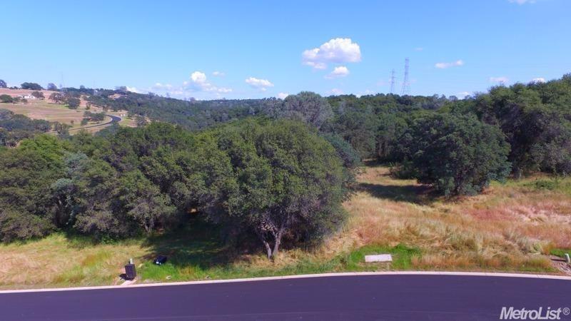 6062-Lot 15 Western Sierra Way - Photo 1