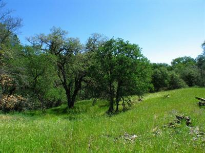 2501 North View - Lot 1 Lane, Placerville, CA 95667 (MLS #17054018) :: REMAX Executive