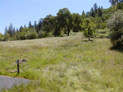 2500 North View - Lot 2 Lane, Placerville, CA 95667 (MLS #17054019) :: REMAX Executive