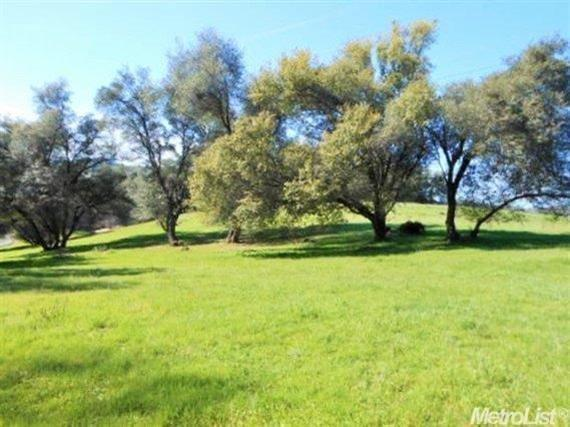 3073 Stagecoach Road, Placerville, CA 95667 (MLS #17058517) :: The Merlino Home Team