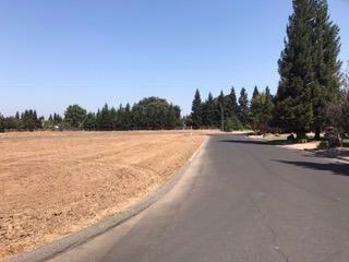 8200 Foppiano Court, Stockton, CA 95212 (MLS #17064845) :: The MacDonald Group at PMZ Real Estate
