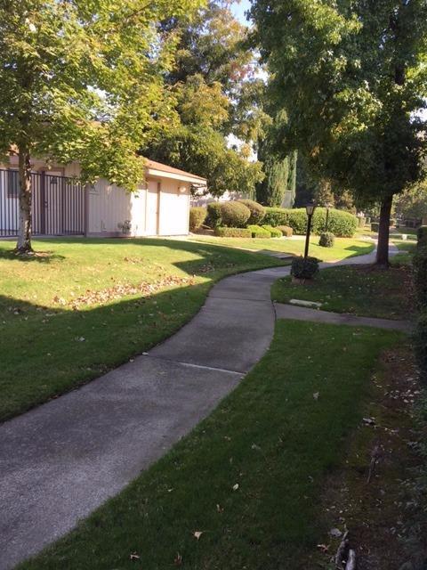 6036 Casa Alegre, Carmichael, CA 95608 (MLS #17066215) :: Keller Williams Realty