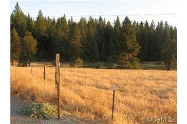 0-0 Highway 88, Pioneer, CA 95666 (MLS #17600011) :: NewVision Realty Group