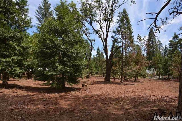 23774 Woodfern, Pioneer, CA 95666 (MLS #18005669) :: Keller Williams - Rachel Adams Group