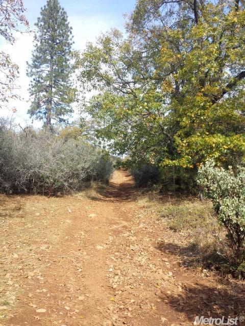 0 Canchalagua Drive, Pollock Pines, CA 95726 (MLS #18006108) :: Heidi Phong Real Estate Team