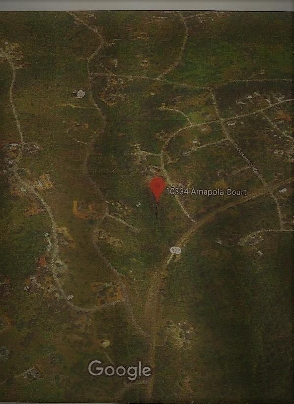 10334 Amapola, Coulterville, CA 95311 (MLS #18008579) :: Keller Williams - Rachel Adams Group