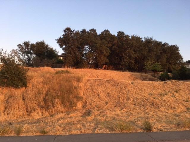 3215 Bordeaux Drive, El Dorado Hills, CA 95762 (MLS #18011368) :: Dominic Brandon and Team