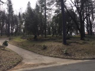 5020 Bella Vista Circle, Foresthill, CA 95631 (MLS #18014085) :: Dominic Brandon and Team