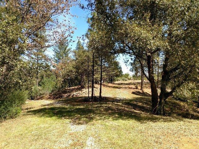 0 Shake Ridge Road, Sutter Creek, CA 95685 (MLS #18016010) :: Dominic Brandon and Team