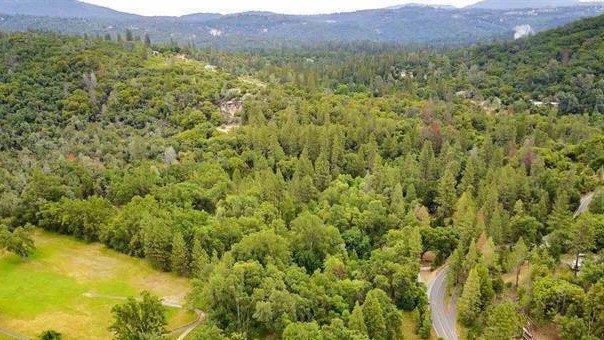 0 Phoenix Lake Road, Sonora, CA 95370 (MLS #18022827) :: Keller Williams - Rachel Adams Group