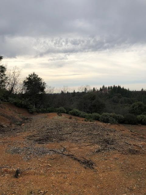 14745 Surrey Junction Ln, Sutter Creek, CA 95685 (MLS #18024192) :: Keller Williams - Rachel Adams Group