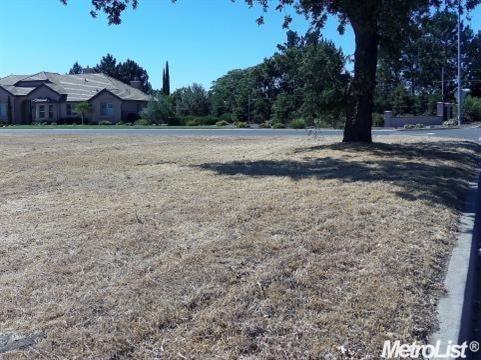2321 Jackie Court, Oakdale, CA 95361 (MLS #18032282) :: Heidi Phong Real Estate Team