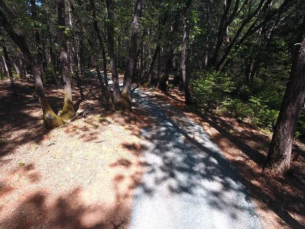 13549 Rattlesnake Road, Grass Valley, CA 95945 (MLS #18033710) :: The Merlino Home Team