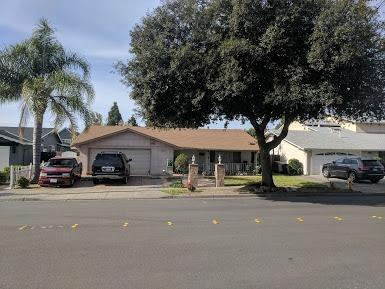 40857 Sundale Drive, Fremont, CA 94538 (MLS #18035613) :: NewVision Realty Group