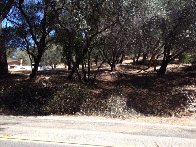 1591 Lakehills Drive, El Dorado Hills, CA 95762 (MLS #18041383) :: NewVision Realty Group