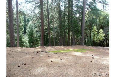 25350 Sugar Pine Drive, Pioneer, CA 95666 (MLS #18043557) :: Keller Williams - Rachel Adams Group