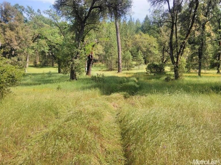 3580 Cedar Creek - Photo 1