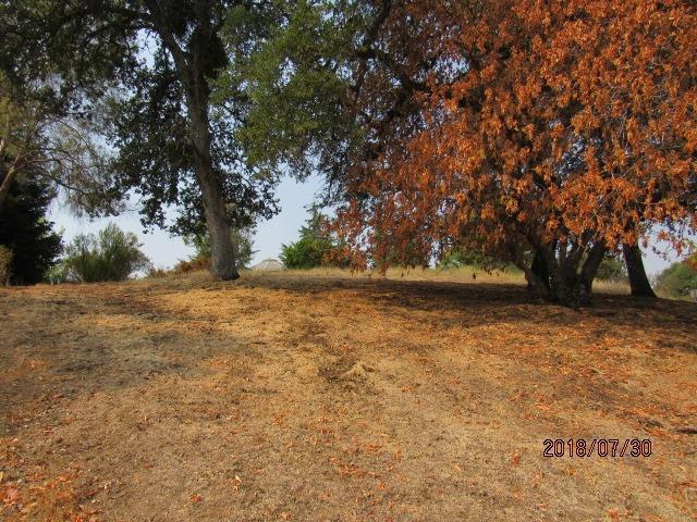 775 Silver Road, Valley Springs, CA 95252 (MLS #18052312) :: Keller Williams - Rachel Adams Group