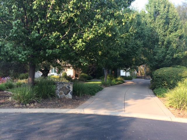 401 Borra Court, El Dorado Hills, CA 95762 (MLS #18055367) :: NewVision Realty Group