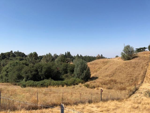 17145 Red Mule Road, Fiddletown, CA 95629 (MLS #18063254) :: The Merlino Home Team