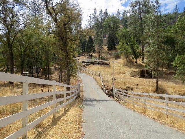 17624 Dog Bar Road, Grass Valley, CA 95949 (MLS #18064195) :: REMAX Executive