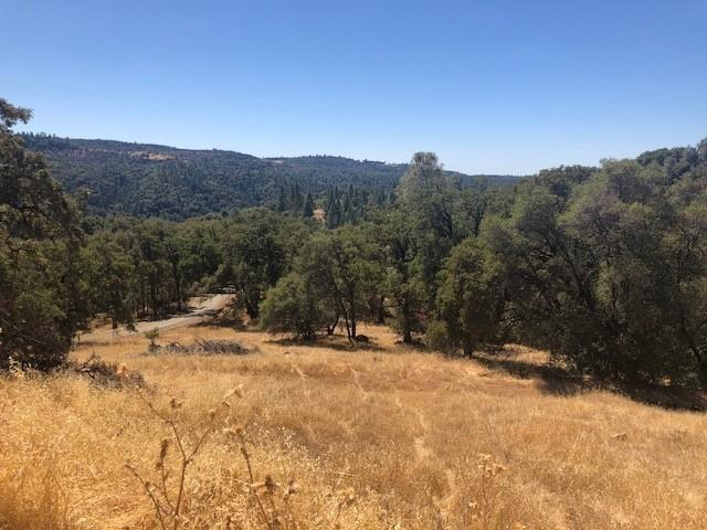 0 View Circle, Fiddletown, CA 95629 (MLS #18064546) :: REMAX Executive